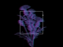 The Lungs Репит премьера 16 августа