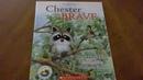 Kindergarten Read Aloud Chester the Brave