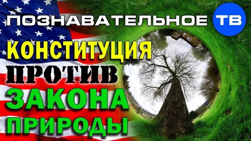 Государство против закона природы Познавательное ТВ Айрат Димиев