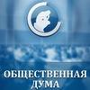 "Экспертный центр ""Общественная Дума"""