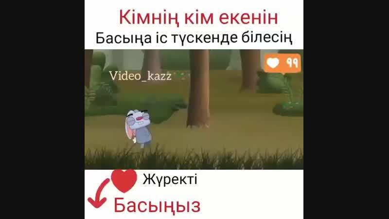 _prikoly_v__20190223151217.mp4