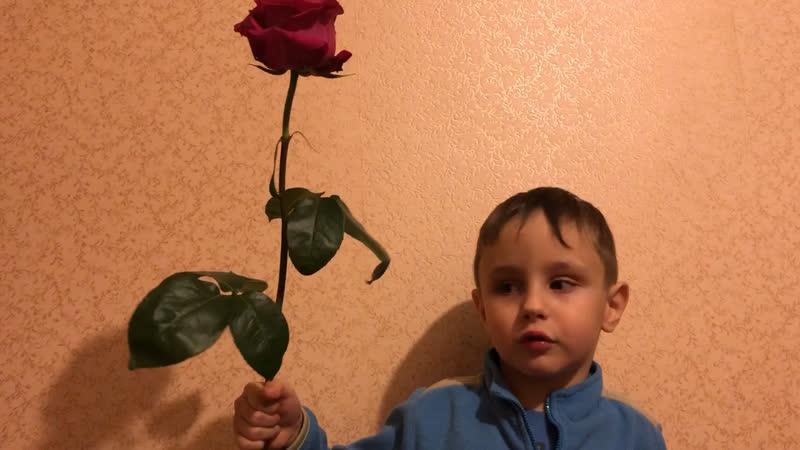 Дарить розу