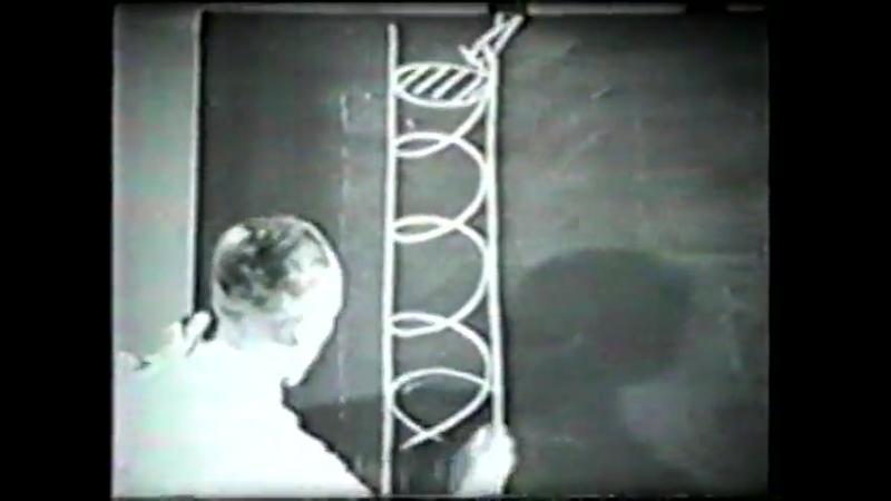 Lehrfilm der Luftwaffe - Maßnahmen gegen das trudeln des Flugzeuges