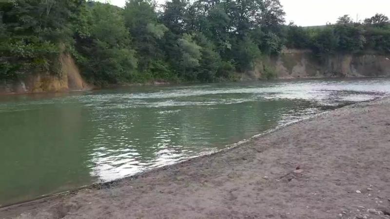 Блэк гуляет на берегу реки Пшеха в Новых Полянах mp4