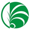 Фитостены - вертикальное озеленение, г. Одесса