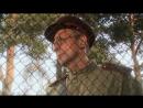Далеко от войны (Александр Сирин)