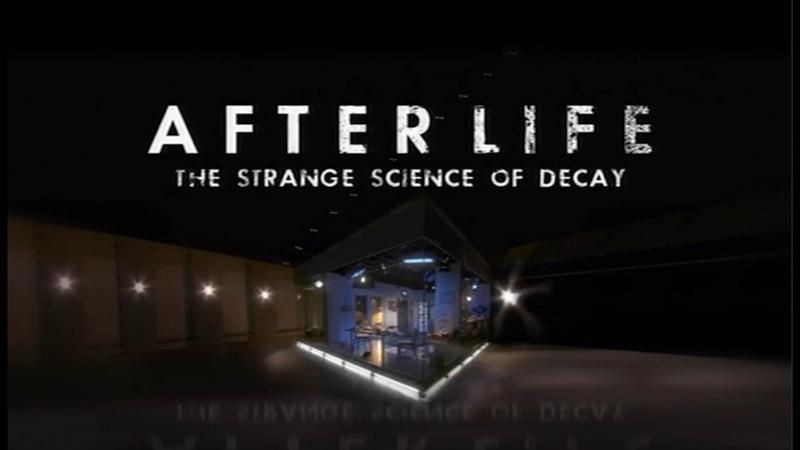 BBC После смерти Загадочная наука разложения (2011)