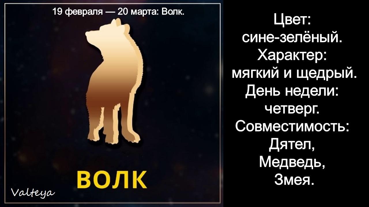 зодиак - Гороскоп американских индейцев. Тотемные животные по Знаку Зодиака. Астрология. VOAqMrq3TDA