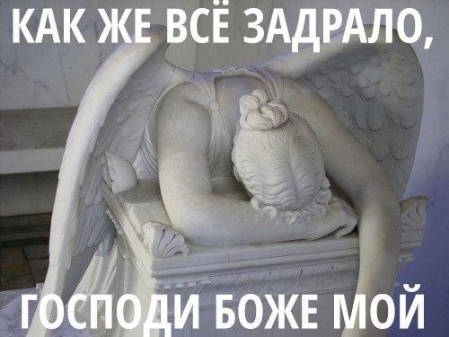 https://pp.vk.me/c543101/v543101141/16eb0/5CmINrr1QKE.jpg