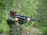 СВД (карабин - ТИГР)