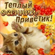 Осенний привет! Осень...