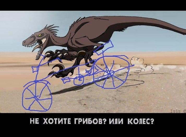 http://cs617521.vk.me/v617521874/6e80/wwpA2hnFJzM.jpg