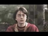 Drarry  Harry Potter vine
