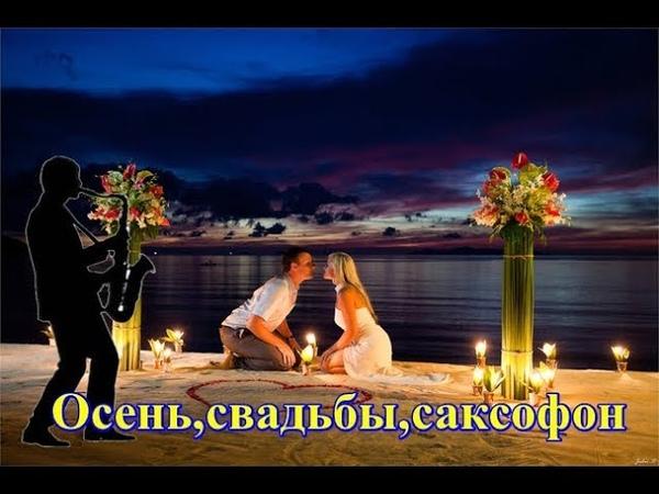 Осень свадьбы саксофон Фаусто Папетти Маленький цветок