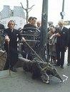 Stanislav Litvinenko фотография #38