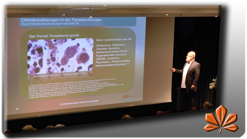 Irisdiagnose Ergebnisse zu Chlordioxid, Schwarze Salbe, Terpentin/Petroleum als Heilmittel
