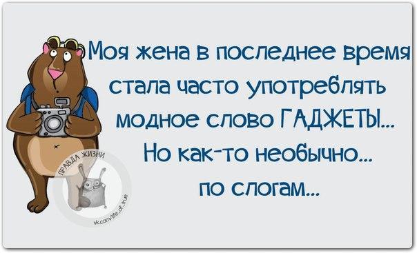https://pp.vk.me/c543105/v543105123/13fc8/GaMjwL7Me5k.jpg