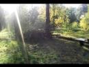 место праздника. дрова. природа.
