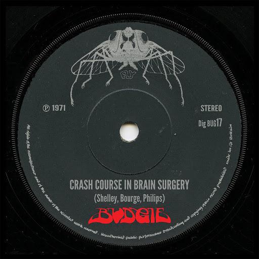 Budgie альбом Crash Course In Brain Surgery [2013 remaster]