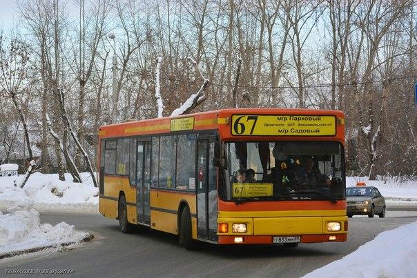 автобусные маршруты.