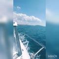maary_vlg video