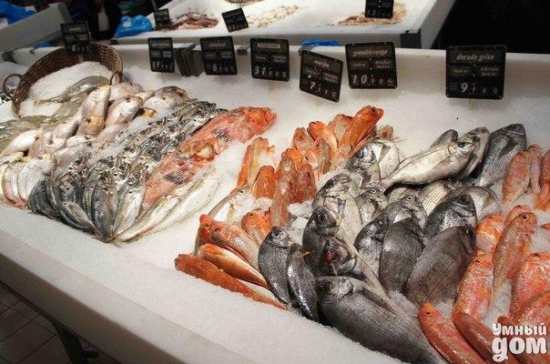Рыба на прилавке: как выбрать качественный продукт Купить сегодня качественную свежую рыбу – большая проблема, и справиться с ней может лишь тот, кто знаком с уловками... На фермах рыбу пичкают кормами с красителями, на рыбзаводах ее замораживают с опасными полифосфатами или коптят химическим вредным жидким дымом, в магазинах откровенную тухлятину выдают за свежий продукт… Что и говорить, купить сегодня качественную свежую рыбу – большая проблема, и справиться с ней может лишь тот, кто знаком…
