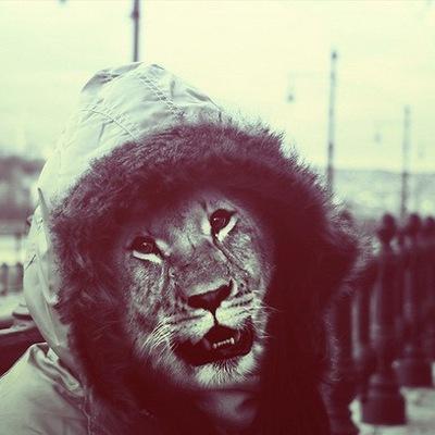 Lions Wear