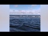 САУЛКРАСТЫ  - море - дюны. Латвия 2018