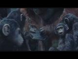 Планета обезьян - Революция Dawn of the Planet of the Apes 2014 - Официальный русский трейлер HD