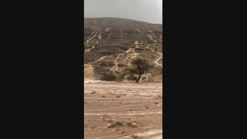 Реки после ливней в КСА