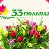 """Цветы Нижний Тагил -  Доставка """"33 тюльпана"""""""