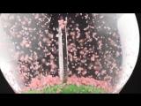 Cherry Blossom Globe Coin.mp4