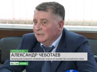 13.02.16 Вести- Алтай.Агробизнес