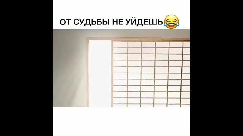 Video_2018-09-18_14-08-20