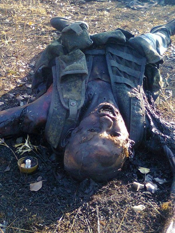 Картинки по запросу трупы украинской армии на донбассе