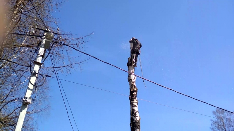 валка сложных деревьев частями