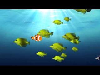 Стихи для малышей про рыб. Наше всё!