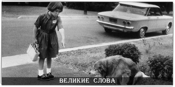 Фото №456248261 со страницы Эльвиры Миленькой