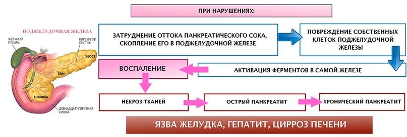 Нарушение работы поджелудочной железы, патология поджелудочной железы, заболевания поджелудочной железы
