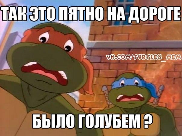 Фото №291861388 со страницы Тимофея Барлекова