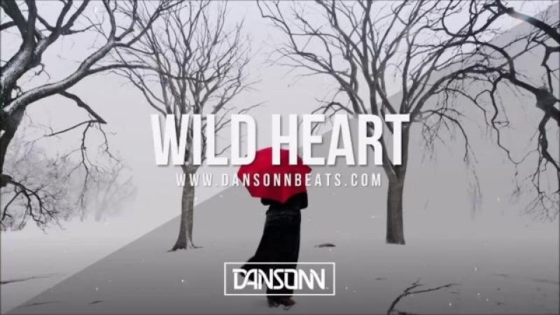 Wild Heart (With Hook) - Deep Inspiring Piano Guitar Beat | Prod. By Dansonn