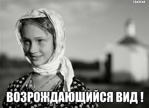 Фото №456250031 со страницы Вадима Курбатова