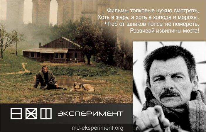 Андрей Арсеньевич Тарковский - Экспериментатор