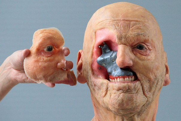 Бельгийская компания Materialise создала модель головы, компоненты которой зацеп...