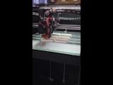 3D принтер Maestro в работе