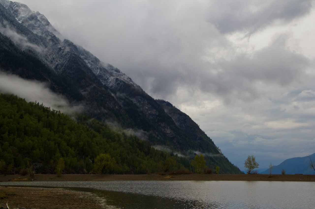 Берег Телецкое озеро