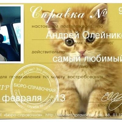 Андрей Олейников, 8 апреля , Красноярск, id141851542