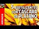 5 fertilizantes con cascara de platano Potasio Mas Frutos @cosasdeljardin