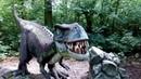 Park Dinozaurów - Dino Park w Malborku.Динопарк в Мальборке .2016