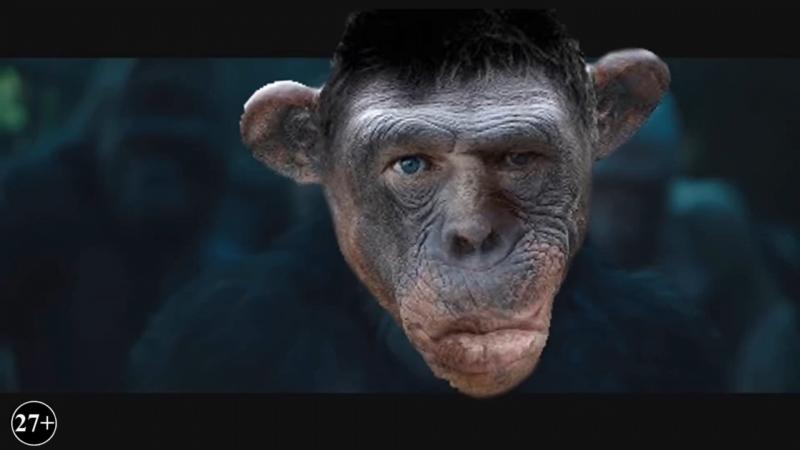 Планета пожилых обезьян